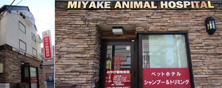 miyake-ah-header-1-2